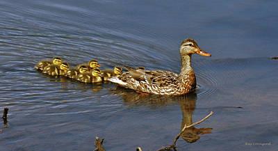 Photograph - Mama And Ducklings by Kay Lovingood