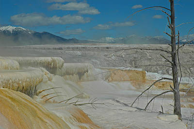 Mammoth Hot Springs Terrace In Yellowstone National Park Print by Bruce Gourley