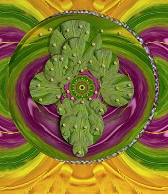 Tibetan Buddhism Mixed Media - Mandala Art by Pepita Selles