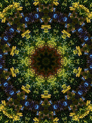 Organic Painting - Mandala Kaleidoscopic Design 11 by Lanjee Chee