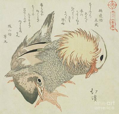 Drake Painting - Mandarin Duck And Drake by Toyota Hokkei