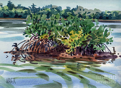 Mangroves Painting - Mangrove Island by Donald Maier