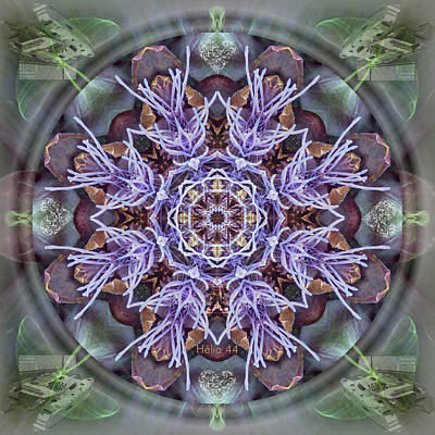 Artichoke Digital Art - Manifestation Magic by Alicia Kent