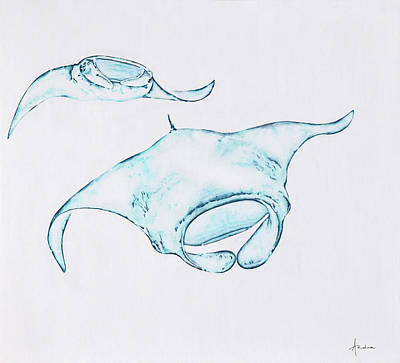Manta Ray Print by Andrea Angulo