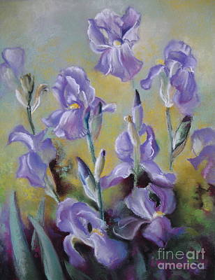Irises Drawing - Maria's Irises by Elena Oleniuc