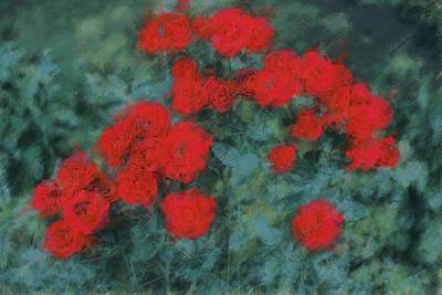 Red Photograph - Marilyn's Red Roses by  The Art Of Marilyn Ridoutt-Greene