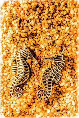 Nautical Jewelry Photograph - Marine Seahorse Ocean Charms by Jorgo Photography - Wall Art Gallery