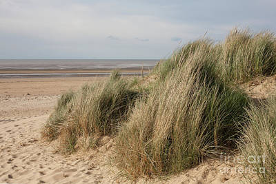 Broad Photograph - Marram Grass On The Wash by John Edwards
