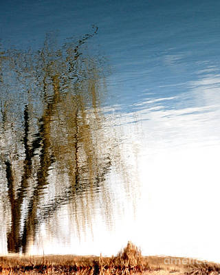 Surrealist Photograph - Materialization Of Nature by Steven Milner