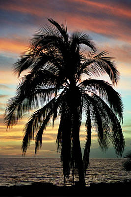 Maui Hawaii Sunset Palm Print by Pierre Leclerc Photography