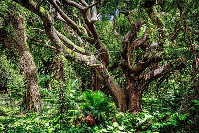 Maui Jungle Print by Kelley King