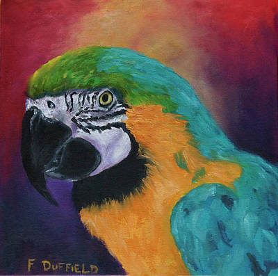 Blue And Gold Macaw Painting - Max by Florine Duffield