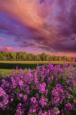 Unity Photograph - May It Be by Phil Koch