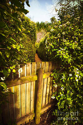 Maze Photograph - Maze Dead End by Jorgo Photography - Wall Art Gallery