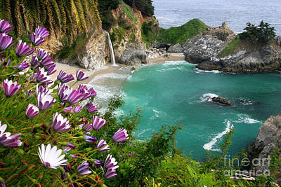 Big Sur California Photograph - Mcway Falls by Buck Forester