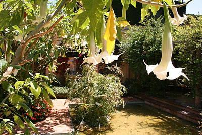 Mediterranean Garden Print by Christiane Schulze Art And Photography