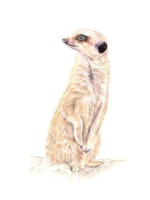 Meerkat Mixed Media - Meerkat In Charge by Elizabeth Lock