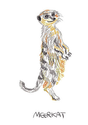 Meerkat Drawing - Meerkat by Light Sweet Cat