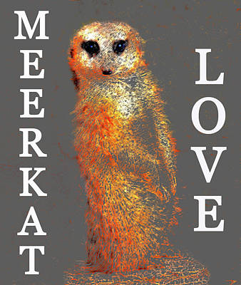 Meerkat Digital Art - Meerkat Love by David Lee Thompson