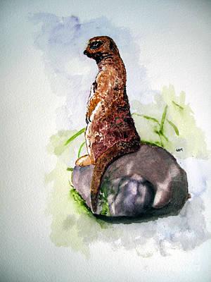 Meerkat Painting - Meerkat by Sandy McIntire