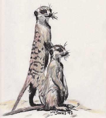 Meerkat Drawing - Meerkats by Marqueta Graham