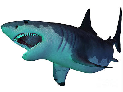 Megalodon Shark Underwater Print by Corey Ford
