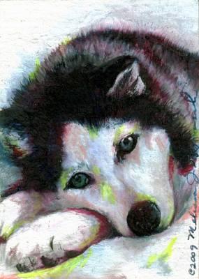 Siberian Husky Drawing - Melancholy Baby by Melissa J Szymanski