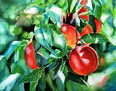 Melocotones- Peaches Print by Maria Balcells