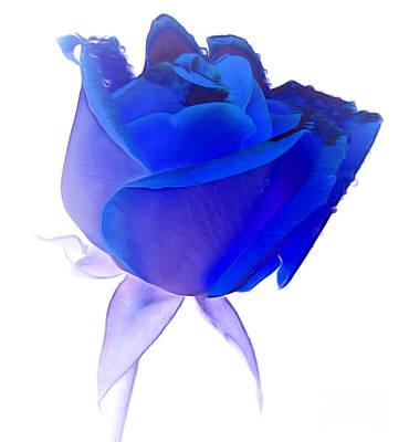 Blue Flowers Photograph - Memories In My Heart by Krissy Katsimbras