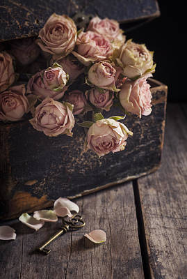 Interior Still Life Photograph - Memory Box by Amy Weiss