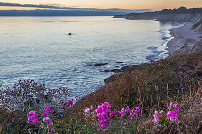 Mendocino Coast At Sunset Print by Marc Crumpler
