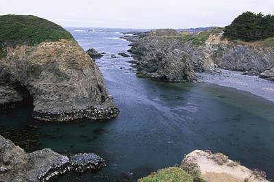 Mendocino Headlands State Park Print by Soli Deo Gloria Wilderness And Wildlife Photography