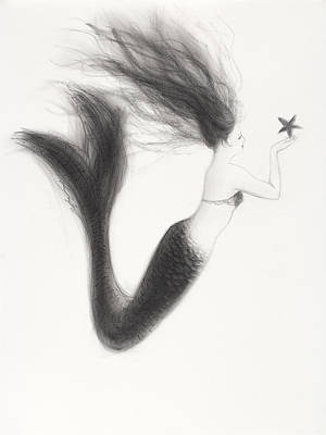 Extinct And Mythical Drawing - Mermaid And Starfish by Tina Obrien