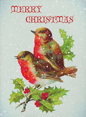 Merry Christmas Snowy Bird Couple Print by Sandi OReilly
