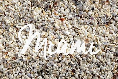 Seashell Photograph - Miami Seashells by Edward Fielding