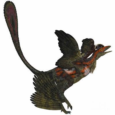 Microraptor Painting - Microraptor On White by Corey Ford