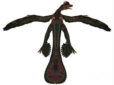 Microraptor Painting - Microraptor Profile On White by Corey Ford