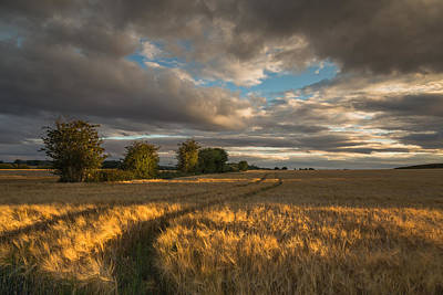 Cereal Photograph - Mid Summer Farming by Chris Fletcher