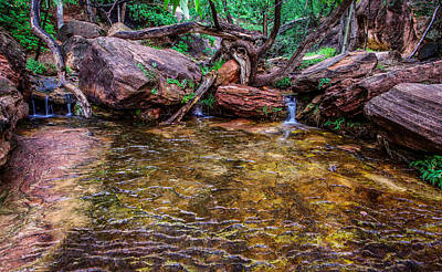 Middle Emerald Pools Zion National Park Print by Scott McGuire