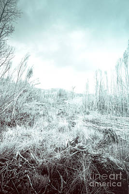 Middle Of Snowhere Print by Jorgo Photography - Wall Art Gallery