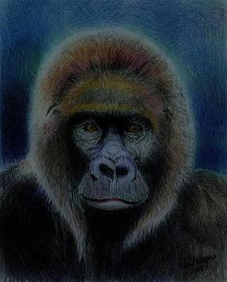 Ape Drawing - Mighty Gorilla by Arline Wagner