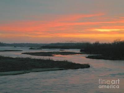 Artist Christine Belt Photograph - Migration On The Platte by Christine Belt
