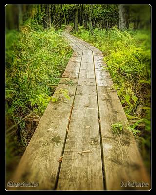 Millers Pond Board Walk Print by LeeAnn McLaneGoetz McLaneGoetzStudioLLCcom