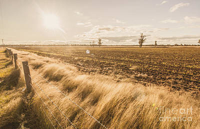Pasture Scenes Photograph - Millmerran by Jorgo Photography - Wall Art Gallery