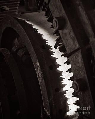 Mind The Teeth Print by Royce Howland