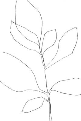 Pottery Barn Style Drawing - Minimalist Botanical Line Drawing 3 by Janine Aykens