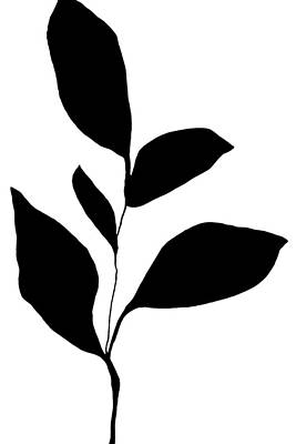 Pottery Barn Style Painting - Minimalist Plant Silhouette 2 by Janine Aykens