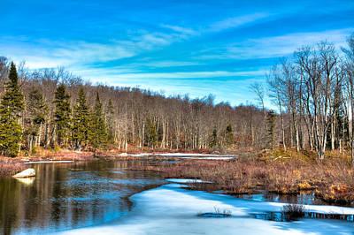 Evergreen Photograph - Minnehaha Creek by David Patterson