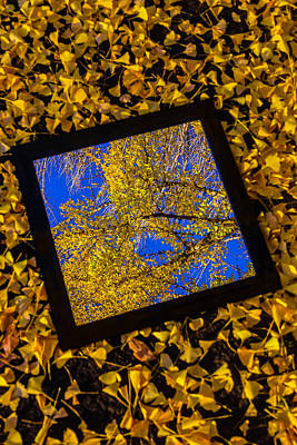 Mirror And Autumn Leaves Print by Garry Gay