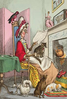 Parakeet Drawing - Miss Ann Thropy by William Heath